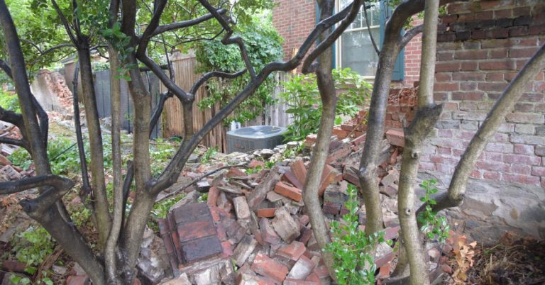 Lee-Fendall House's Garden Wall Collapses!