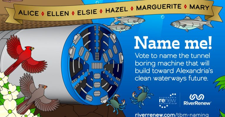 Help Name New Tunnel Boring Machine for Alexandria to Build Cleaner Waterways
