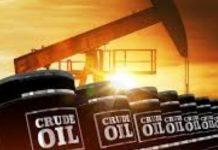 Petroleum minister Pradhan discusses crude oil price volatility