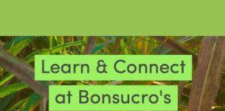 Bonsucro