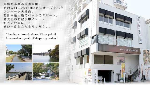 福岡のドッグラン ワンパークカフェ 大濠店