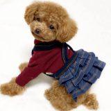 小型犬の洋服サイト、プレシャスファミリー