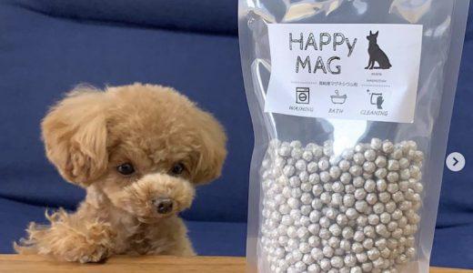 【犬服洗濯にはコレ】300回繰り返せるペット臭対策洗剤「HAPPY MAG」