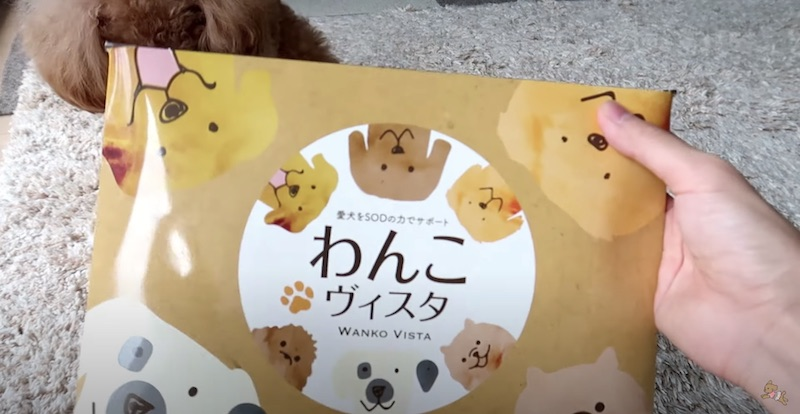 犬の食欲不振に効くサプリメント