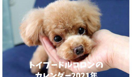 愛犬のオリジナルカレンダー(卓上カレンダー)発売します!!