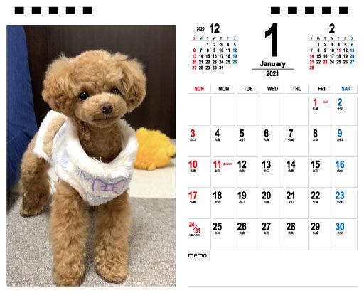 愛犬カレンダー(1月)