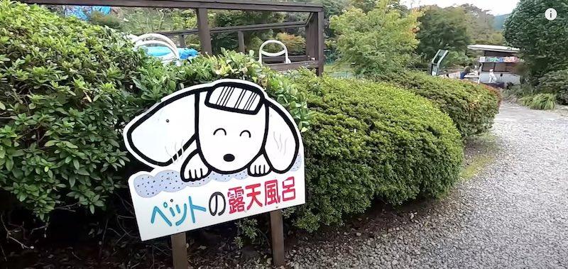施設:ペットの露天風呂