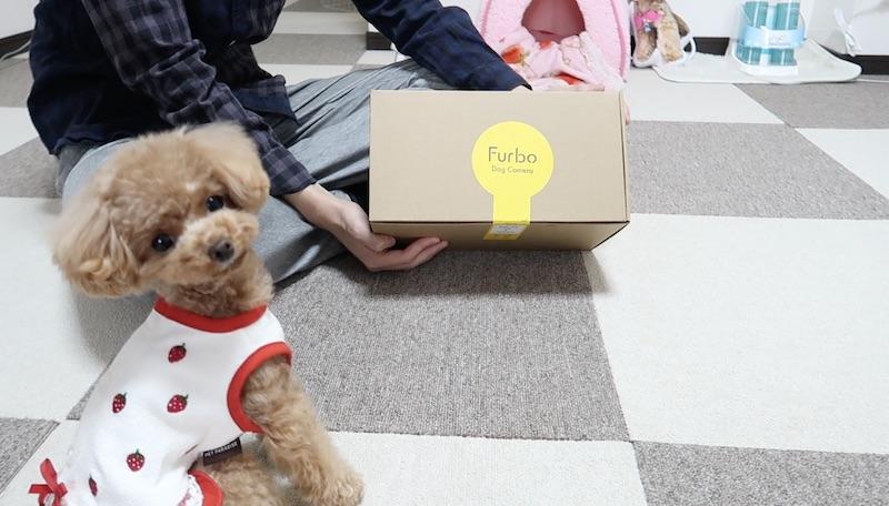 到着したFurboの箱