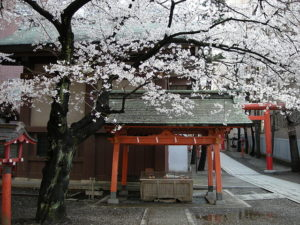 hanazono-shrine-gallery-3