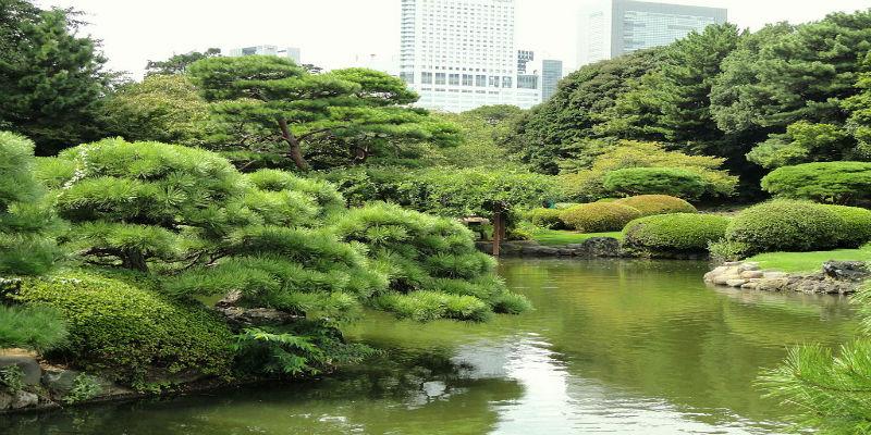 shinjuku-gyoen-national-garden-tokyo