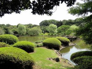 shinjuku-gyoen-national-garden-3