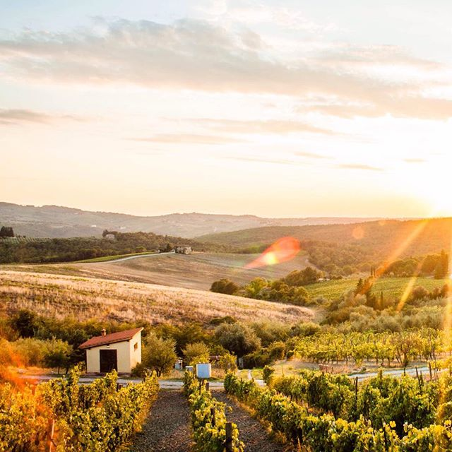 #sunset in #chianti, #tuscany, #italy best dinner we've had on this trip just behind the camera