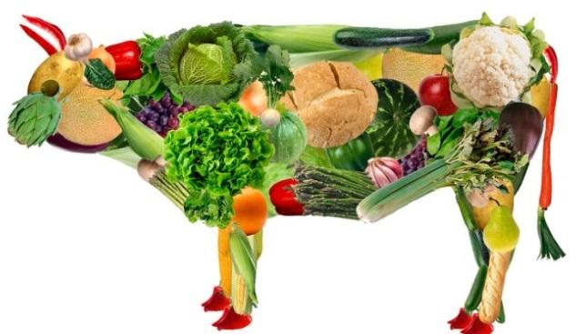 7 Menu Vegetarian Pemula di Jamin Enak dan Sehat