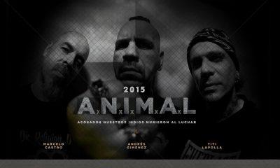 bg animal