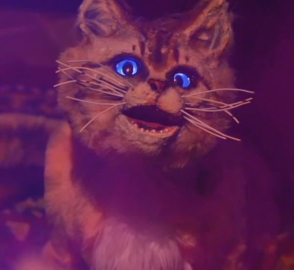 Mastocat