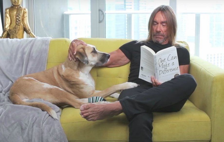 Iggy Pop PETA advert