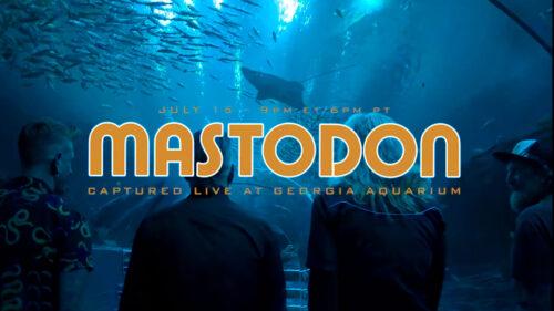 4082809e mastodon
