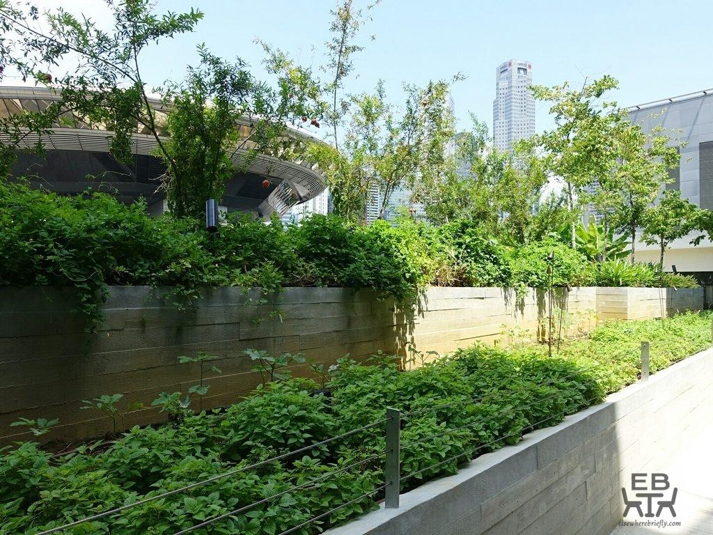 noka garden
