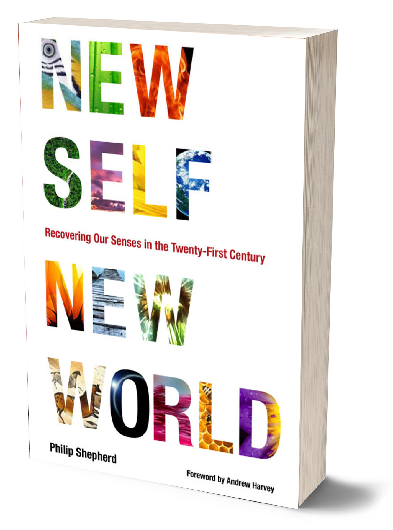 Cover image of the book New Self New World by Philip Shepherd