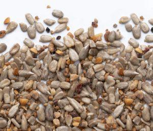 No Mess Seed (Shell Free)