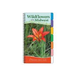 Flower & Garden Guides