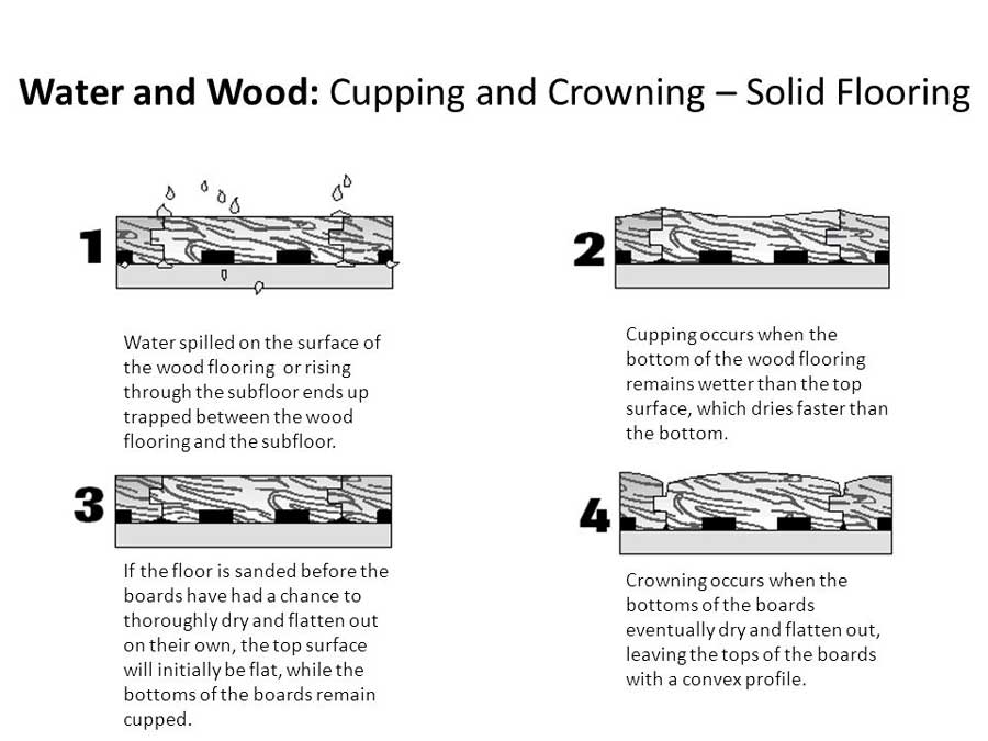 how water affects hardwood floors first restoration services
