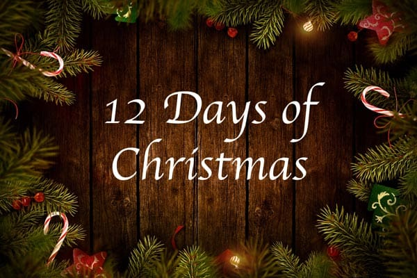 12-days of christmas first restoration services