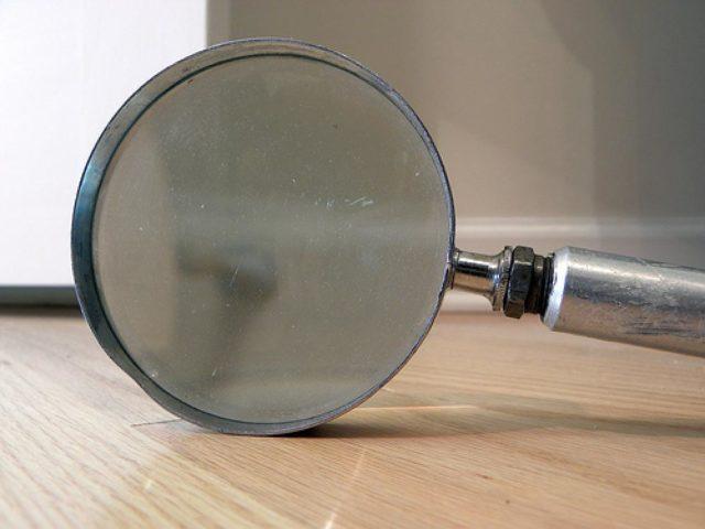 magnifyingglass1