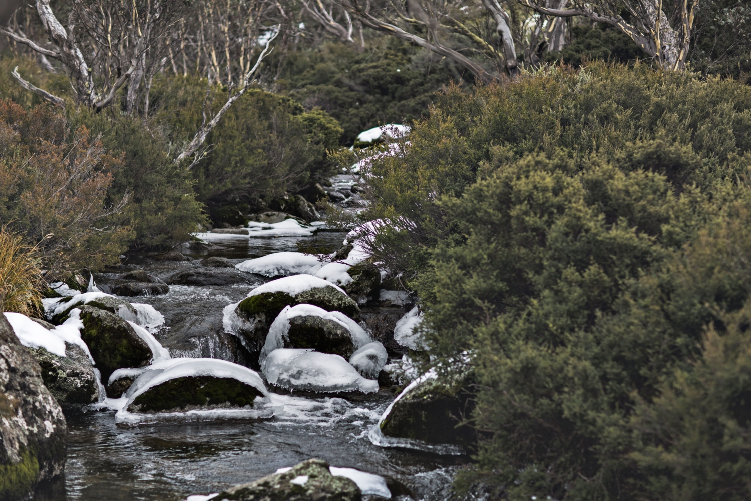 Sara-knit-mr-mittens-thredbo-stream