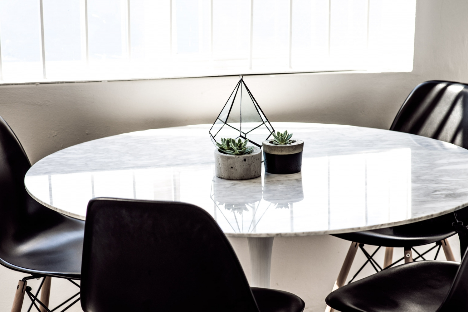 harper-and-harley_Etsy_plants-in-an-office_2