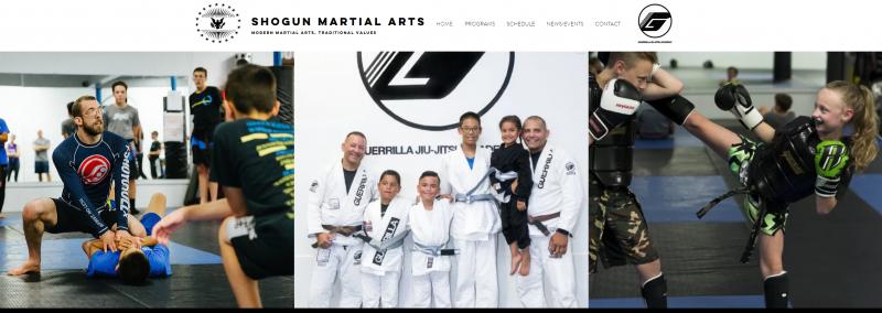 martial arts webster ny, jiu jistu
