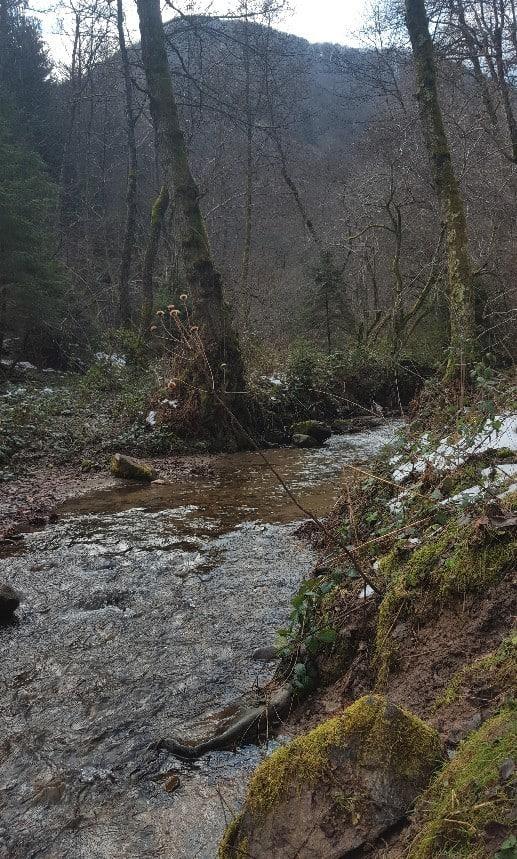 Das Cibin-Tal zwischen Crinţ und Sibiel