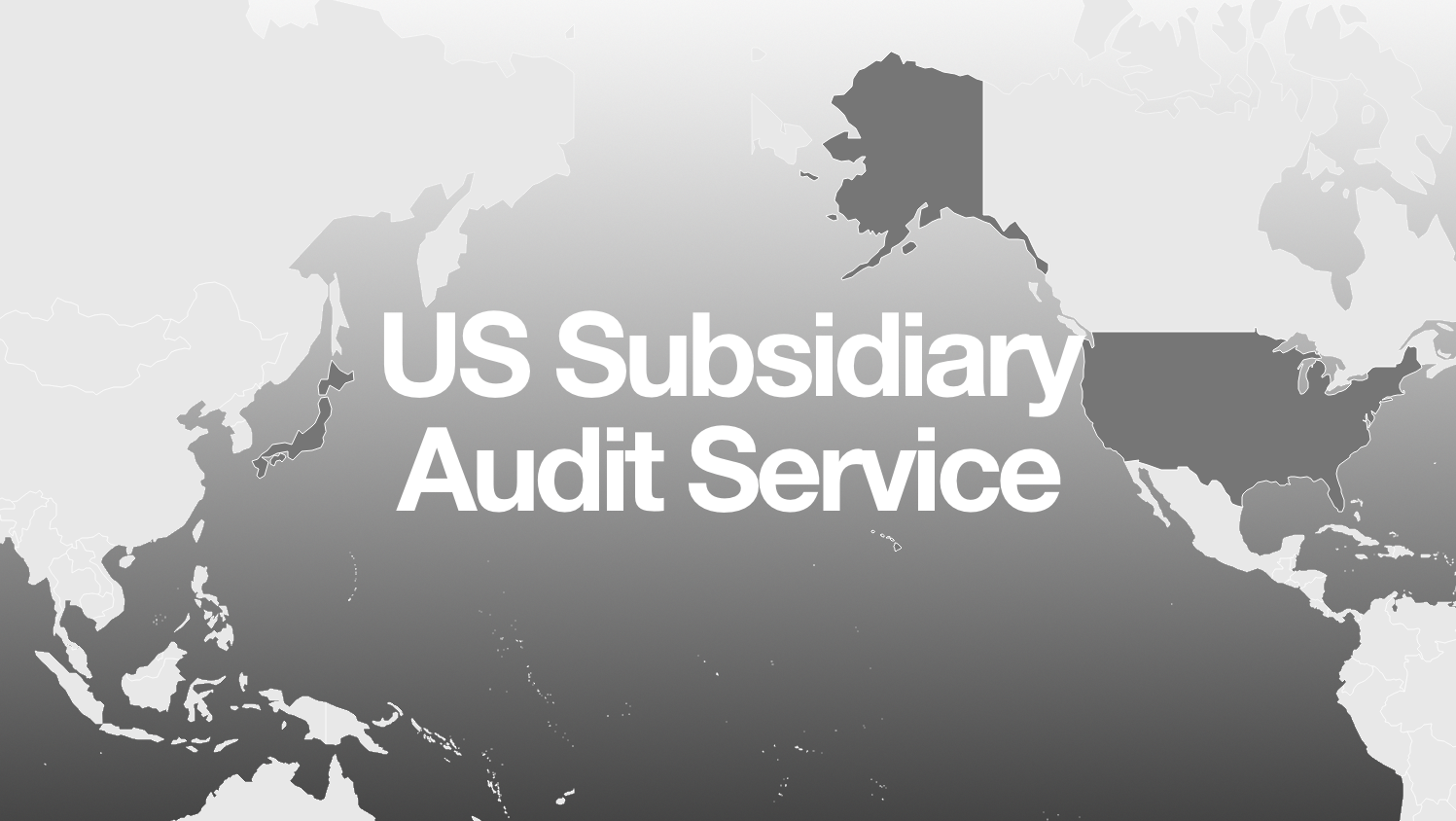 us subsidiary audit
