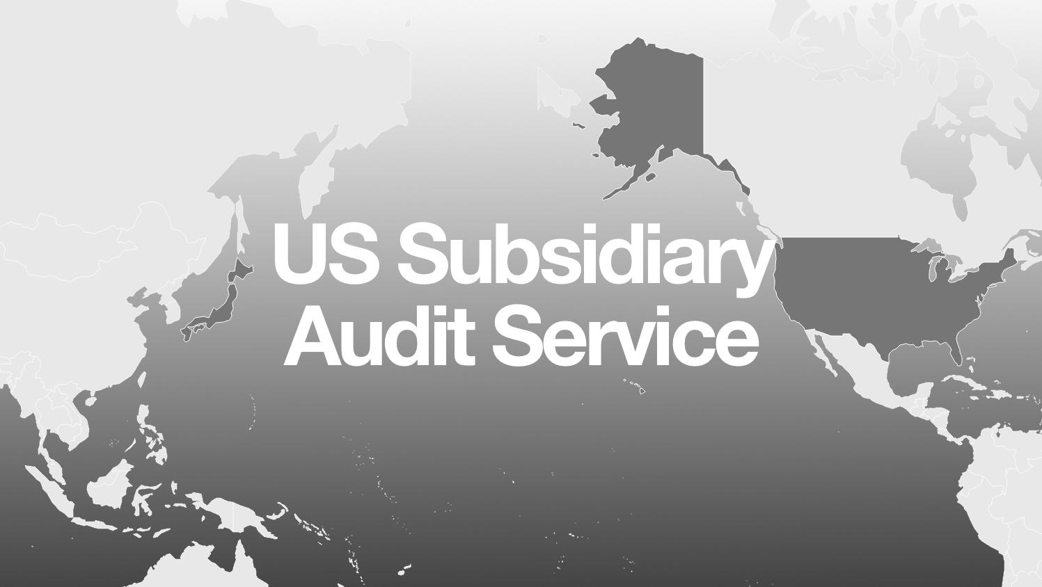 us subsidiary audit