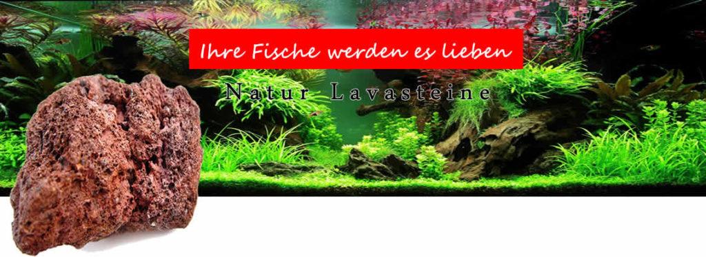 Aquarium Lavasteine