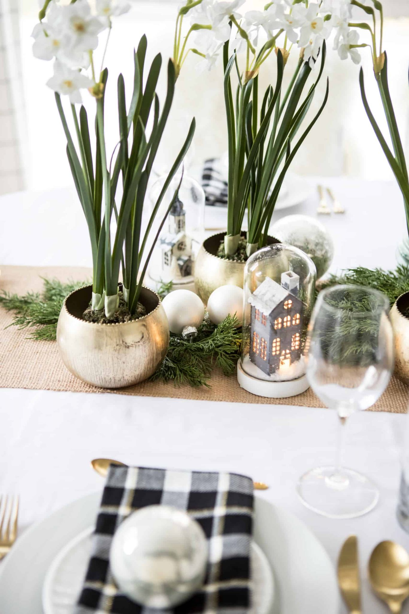 Potted plants on the dining room table
