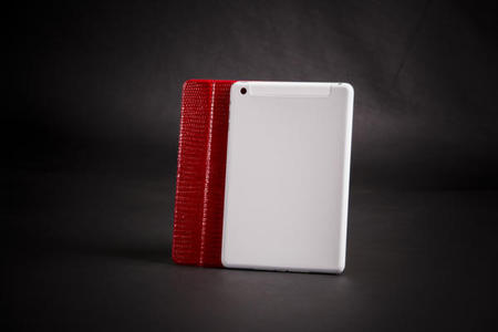 Cottin iPad Mini cover 2