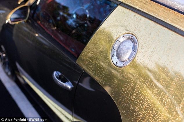 Gold Bugatti Veyron 5