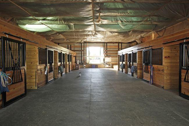 Equestrian Estate 9