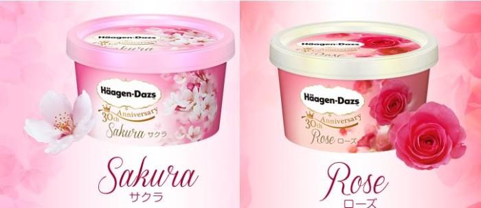 Haagen Dazs Ice Cream Japan