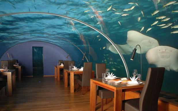 10 Most Beautiful Restaurants In The World - Ithaa Undersea Restaurant 2
