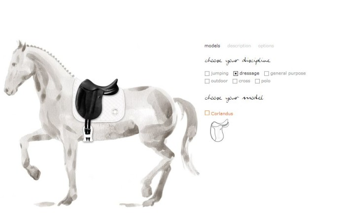 Hermes Personalized Saddles 1