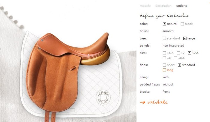 Hermes Personalized Saddles 2