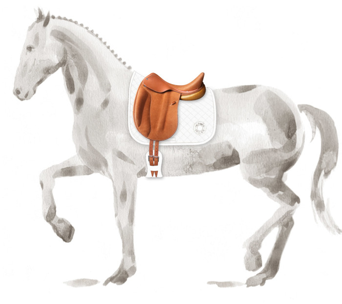 Hermes Personalized Saddles 3