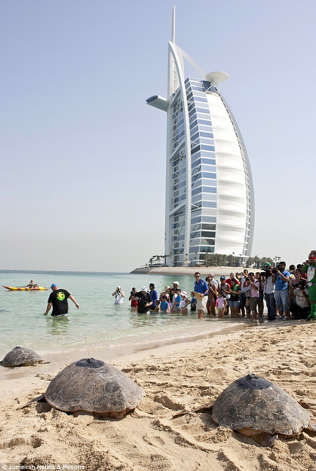 Burj Al Arab - Spoilt Rotten 5