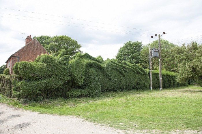 Dragon Hedge 2