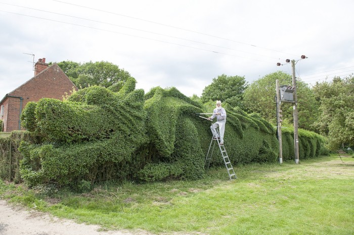 Dragon Hedge 3