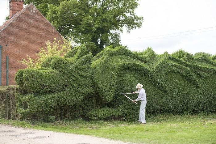 Dragon Hedge 4