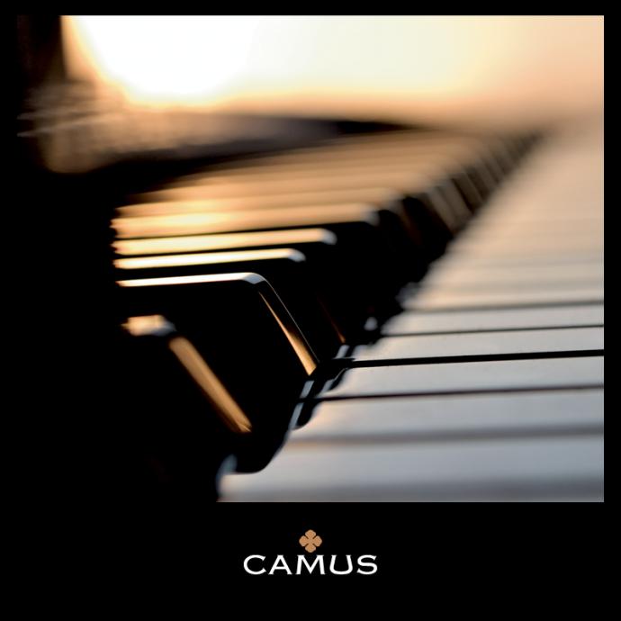 Camus Organoleptic Piano Stand 5