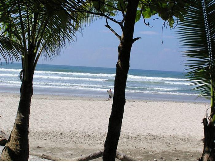 Katalyst - Pura Vida Costa Rica